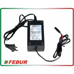 Caricatore mantenitore batteria Full Spectrum Power Pulse