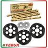 Kit trasmissione Gandini Race 3 corone + 2 pignoni + catena DID ERV3 520 Ducati Panigale 1199 1299 2012-2017